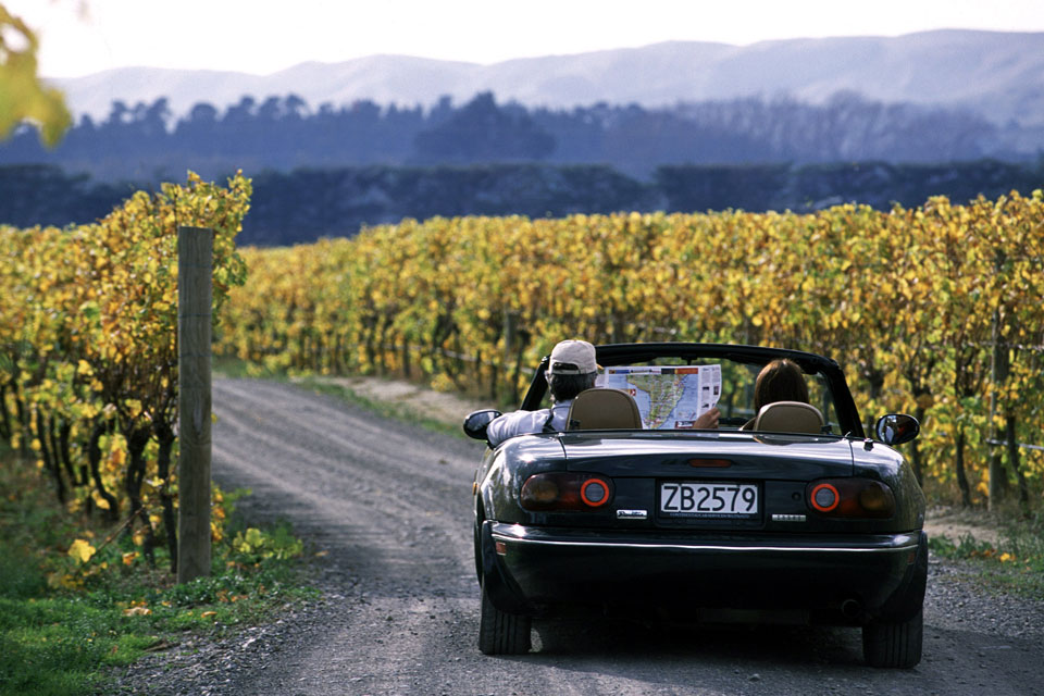 Vineyard tours available in the Waiarapa